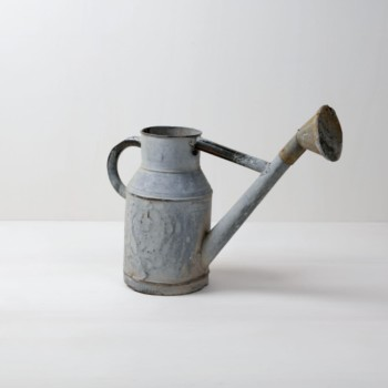 Rent, vintage watering can, fancy decoration