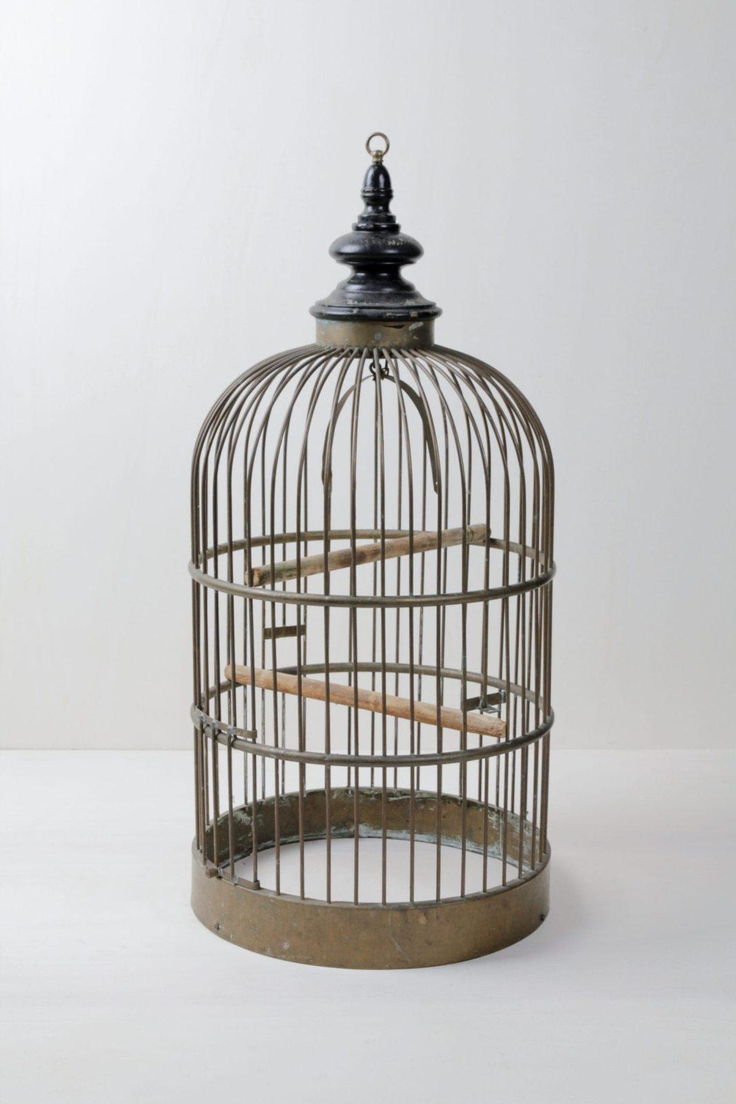 Vogelkäfig Anthea | Der Vogelkäfig ist ein sehr romantisches Accessoire. Er eignet sich sehr gut für Hochzeiten und andere besondere Tage. | gotvintage Rental & Event Design