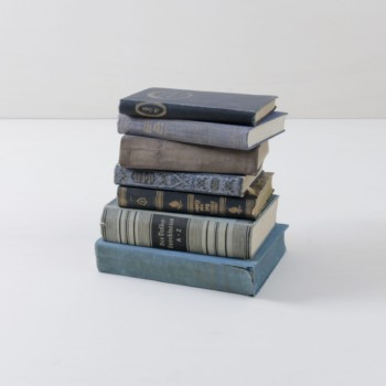 Books Leonora Vintage Blue | Make it cosy with old books. Sorted by colour, this set contains ten vintage books. | gotvintage Rental & Event Design