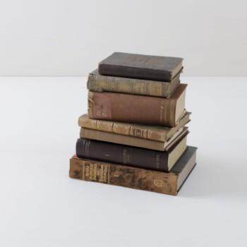 Bücher Leonora Vintage Braun | Bücher sorgen immer für eine gemütliche Atmosphäre. Warum nicht auch mal unsere vintage Bücher nach Farbschema sortieren? Ein Set besteht aus zehn Stück. | gotvintage Rental & Event Design