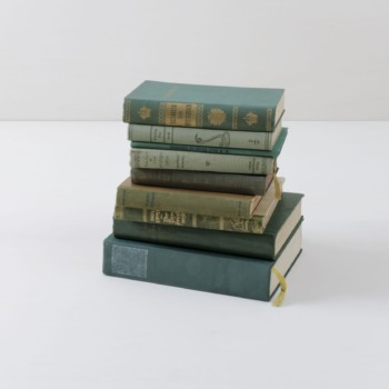 Books Leonora Vintage Green | Make it cosy with old books. Sorted by colour, this set contains ten vintage books. | gotvintage Rental & Event Design
