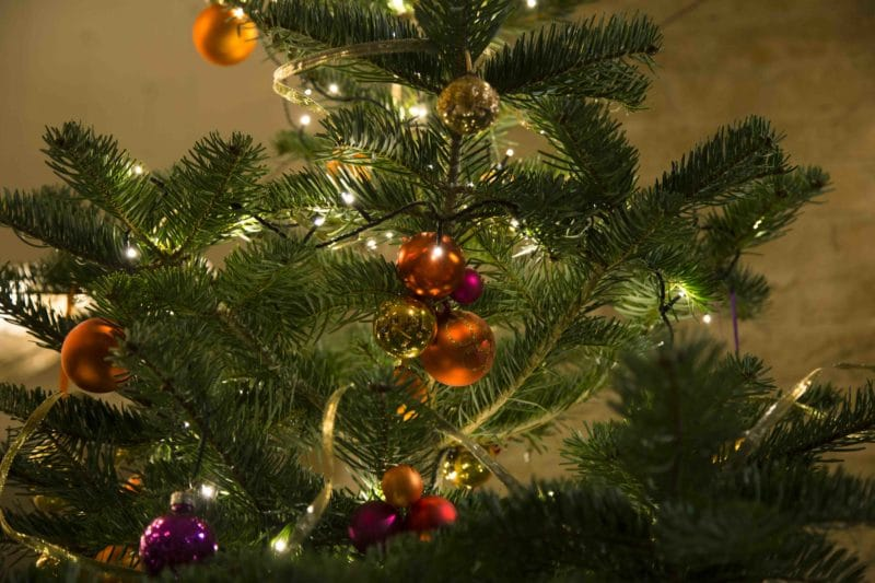   During the Christmas season we rent out numerous mouth-blown glass beads and other classic Christmas tree decorations in various colours, shapes and sizes.  Contact us and together we will find the right tree ornaments for your Christmas tree.  